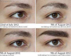 eyebrows3